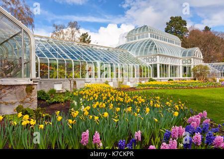 Seattle flower conservatory in full bloom. Volunteer Park - Stock Photo