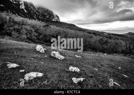 Black and white landscape. Forest, mountains and cloudy sky. Bosco della Ficuzza, Sicily, Italy - Stock Photo