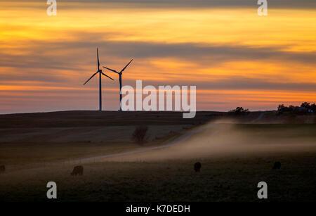 Silhouette wind turbines on field at sunset - Stock Photo