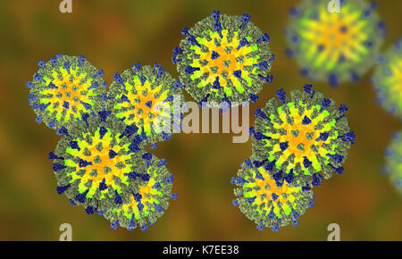 Measles virus particle, computer illustration. This virus, from the Morbillivirus group of viruses, consists of - Stock Photo