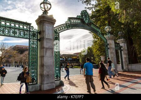 how to get into berkeley university
