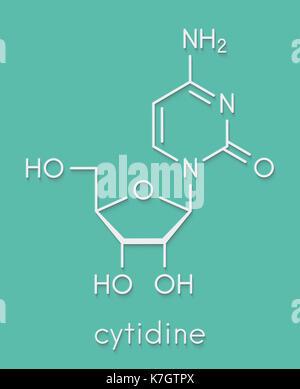 Cytidine RNA building block molecule. Skeletal formula. - Stock Photo