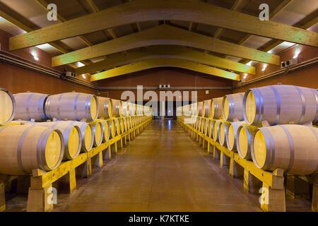 Oak casks of red Villacreces wine in storage, Ribera del Duero wine production by River Duero, Navarro, Spain - Stock Photo