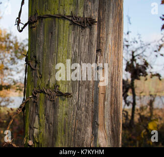 old fence with barbed wire close up photo. Beautiful picture, background, wallpaper - Stock Photo