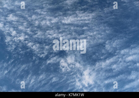 Fluffy clouds(cirrocumulus) viewed from below. - Stock Photo