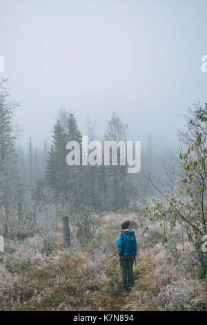 Young woman hiking in forest with backpack - Stock Photo