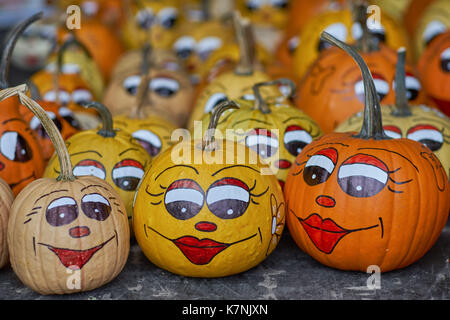 Smiling pumpkins Pumpkins with painted eyes lips nose and eyebrows many multicolor pumpkins many multi-shaped pumpkins - Stock Photo