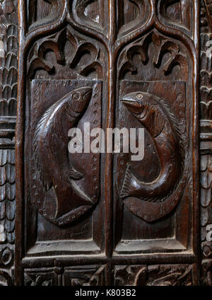 St Levan church, Cornwall: C15th bench end at W end of nave carved with two chad or young sea bream referring to - Stock Photo