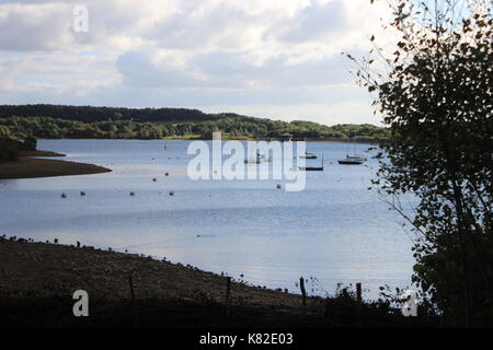 Boats on a lake - Stock Photo