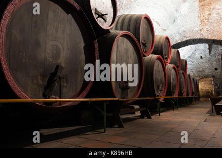 Wooden wine barrels in an underground cellar, Melnik - Stock Photo