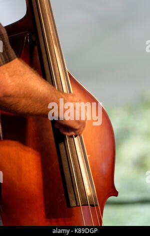 Upright bass player with one hand shown playing the instrument. - Stock Photo