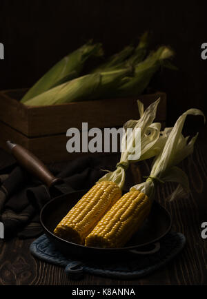Corn cobs. Still life in dark colors - Stock Photo