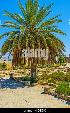 EL DJEM, TUNISIA - SEPTEMBER 1, 2015: The town boasts the interesting archaeological museum with ancient roman mosaics - Stock Photo