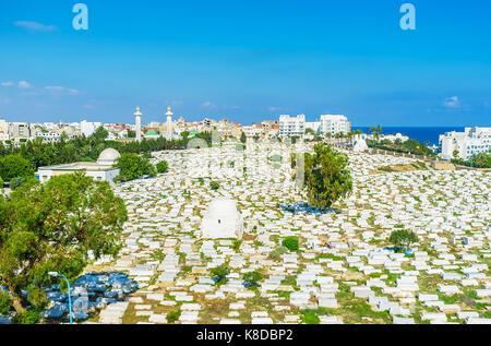 Aerial view of historic Sidi el-Mezeri cemetery with two minarets of Habib Bourguiba Mausoleum on the background, - Stock Photo