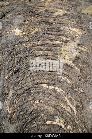 Solidified pahoehoe or ropey lava field, Tahiche, Lanzarote, Canary Islands, Spain - Stock Photo