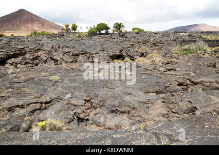Solidified pahoehoe or ropey lava field, Tahiche village, Lanzarote, Canary Islands, Spain - Stock Photo