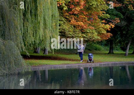 A mother and her son collecting conkers in Rowntree Park, York, North Yorkshire, UK. Picture: Scott Bairstow - Stock Photo
