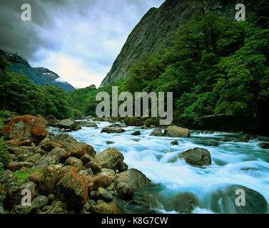 New Zealand. Milford Sound. Fast running stream. - Stock Photo