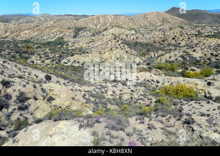 The Tabernas Desert is in the Spanish province of Almería. It is the driest region of Europe and the continent's - Stock Photo