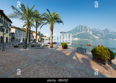 Man sitting on bench among palm trees in the evening sun on the promenade of Riva di Solto at Lake Iseo, Lombardy, - Stock Photo