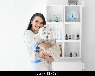 Beautiful smiling veterinarian doctor holding cute white dog. Pet care - Stock Photo