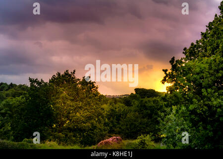 Sun behind trees in Anston Stones, Anston - Stock Photo