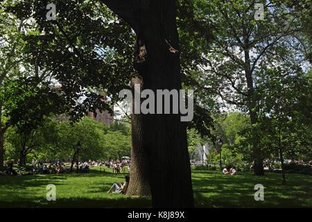 New York, NY, USA - June 1, 2017: Girl enjoys sitting under a shady tree on a sunny day in Washington Square Park - Stock Photo