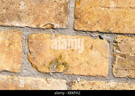 photographed close-up of a yellow old brick used as a floor. On the surface there is some dirt and debris - Stock Photo
