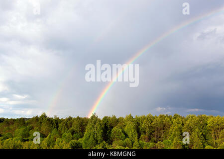 two rainbows, one bright and the second poorly visible, in a cloudy gray sky against the background of a green forest. - Stock Photo
