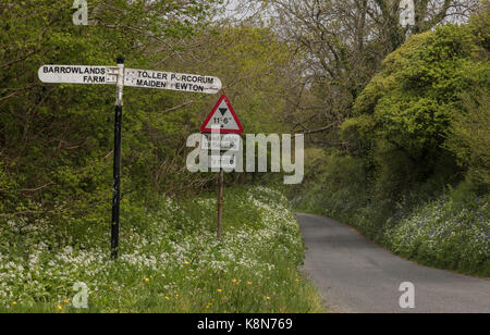 Old signpost on flowery rural lane in spring, in West Dorset. - Stock Photo