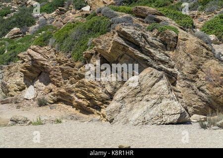 rocks and dryland with some plants - Stock Photo