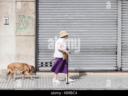 Elderly woman walking old dog in city street - Stock Photo