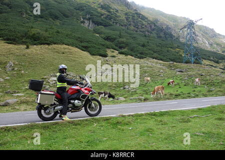 Biker man driving a red BMW GS R 1200 Adventure in Transylvania region on the Transfagarasan road. Romania. August - Stock Photo
