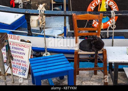 Samos island, Greece - September 18, 2016: Black cat at fishing boat at Pythagorion/Pythagoreio - Stock Photo