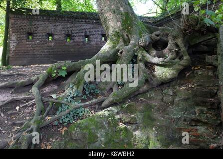 Fort X, Remains of Preussian fortifications - Stock Photo
