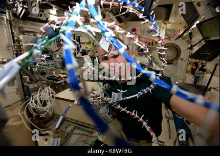 NASA Expedition 52 crew member American astronaut Randy Bresnik works on an experiment at the International Space - Stock Photo