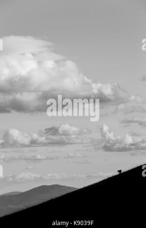 A tiny horse figure on the side of a mountain, beneath a deep sky - Stock Photo