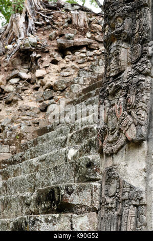 Central America, Honduras, Mayan city ruins in Copan. The picture presents detail of the Stela P on the West Plaza - Stock Photo