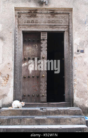 Cat in front of ornate  carved wooden door, Stone Town, Zanzibar, Tanzania, East Africa - Stock Photo