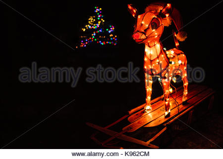 Christmas decorations on the yard, Rudolph the Red-nosed Reindeer and a lighted Christmas tree in the background - Stock Photo