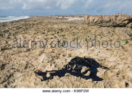 Crude oil along the east coast of Bonaire after a nearby oil spill in Trinidad. - Stock Photo