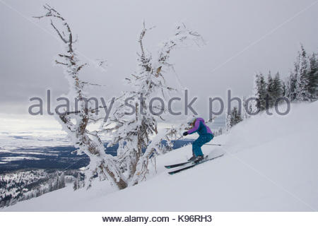 A teen girl downhill skiing near rime covered trees on a cloudy day. - Stock Photo