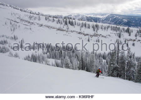 A teen boy downhill skiing near rime covered trees in the mountains on a cloudy day. - Stock Photo