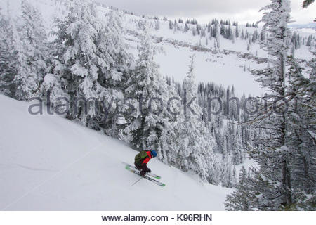 A teen boy downhill skiing with rime covered trees in the mountains on a cloudy day. - Stock Photo