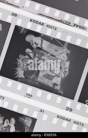 Exposed Kodak Tri-X 400 black and white negative film on light table - USA - Stock Photo