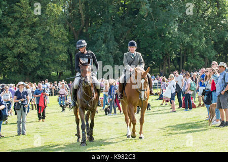 Mark Todd retires from the 2017 Land Rover Burghley Horse Trials after falling on Leonidas 11 in Discovery Valley - Stock Photo