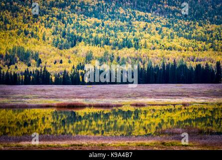 Kanas. 22nd Sep, 2017. Photo taken on Sept. 22, 2017 shows the autumn scenery of Yaze Lake in the Kanas scenic area, - Stock Photo