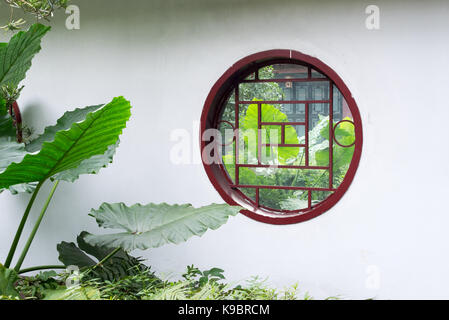 Plants with large leaves thhough a circular window on a white wall  in BaiHuaTan park, Chengdu