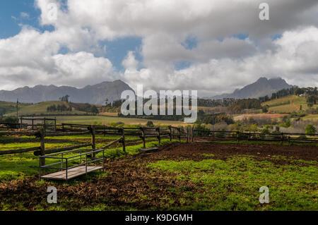 Rustenberg winery and Simonsberg, Stellenbosch South Africa - Stock Photo