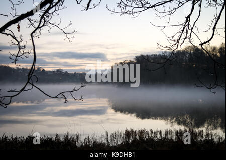morning by the water - Stock Photo